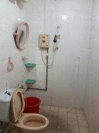 common-toilet-before